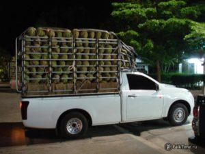 Перевозка дурианов