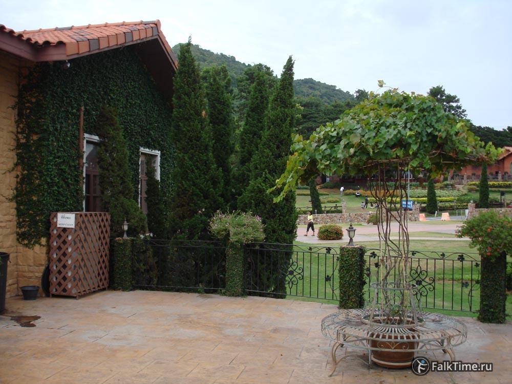 Декоративная лавочка с навесом из винограда