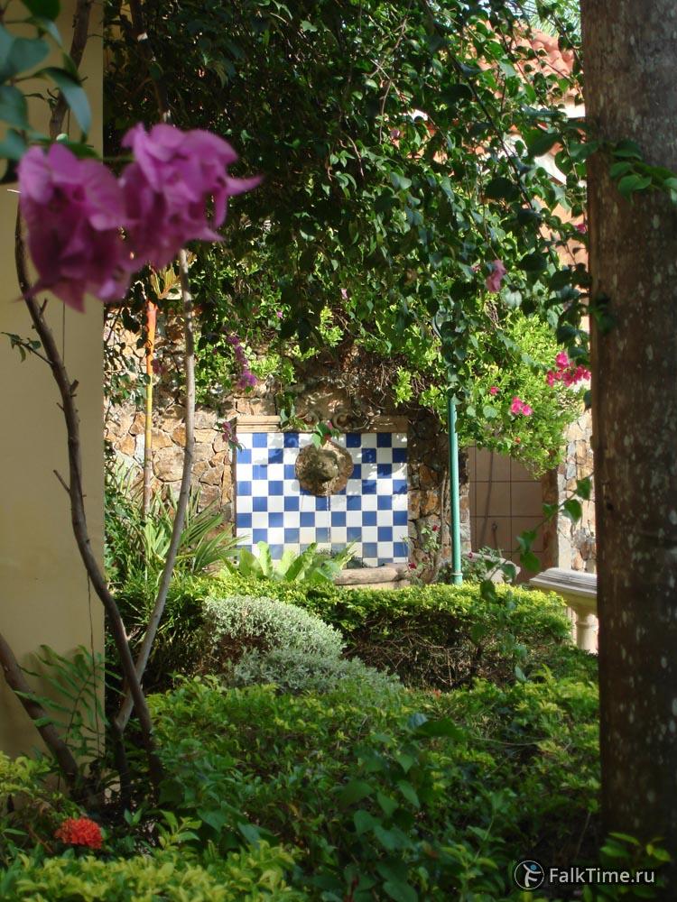 Сад, фонтан