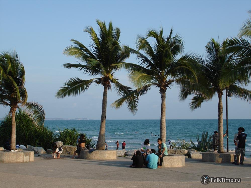 Пальмы в Районге