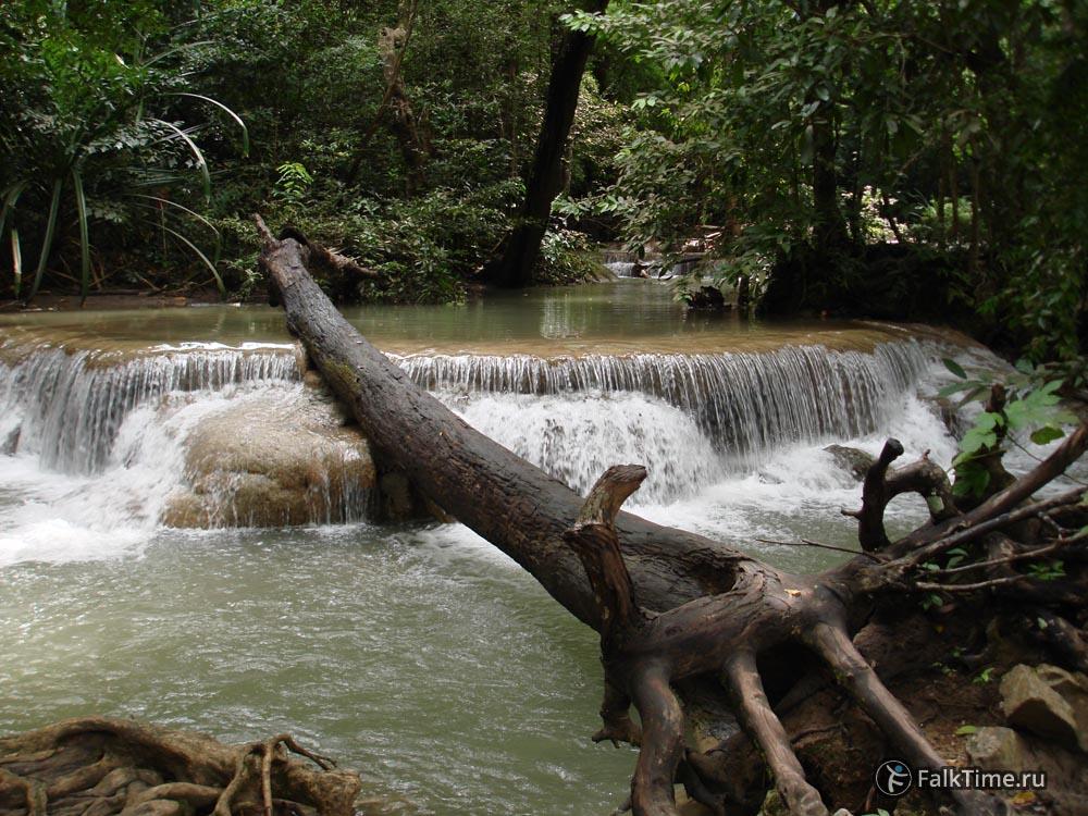 Пороги водопада и упавшее дерево